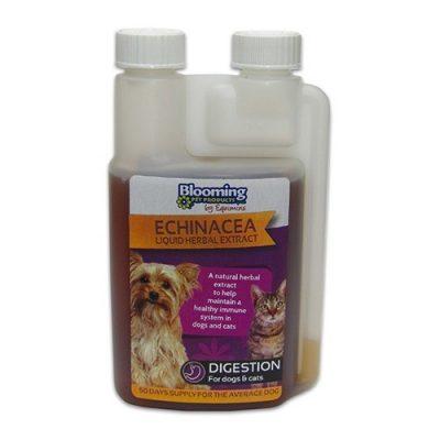 Echinacea Herb Liquid