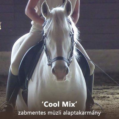 'Cool mix' zabmentes müzli alaptakarmány