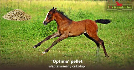 'Optima' pellet alaptakarmány csikótáp