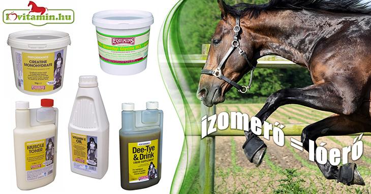 Az Equimins izomtömeg növelő termékei segítenek abban, hogy lovad jól izmolt legyen