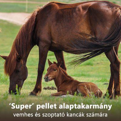 'Super' pellet alaptakarmány vemhes és szoptató kancák számára