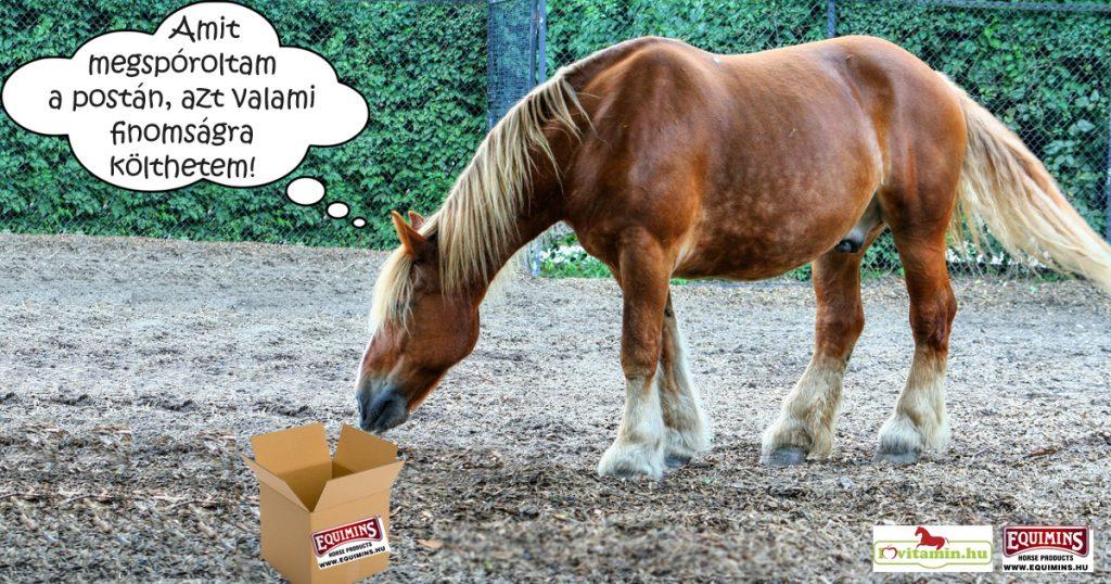 Posta és futár helyett inkább a lovadra költs!