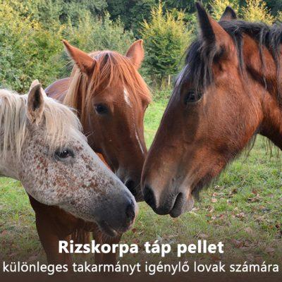 Rizskorpa táp pellet különleges takarmányt igénylő lovak számára