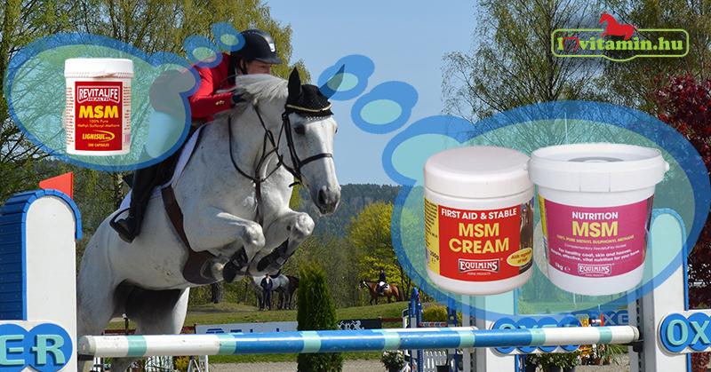 Mi az az MSM és miért hasznos a lovaknak?