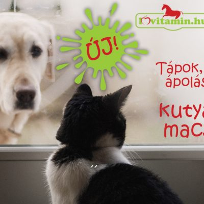 Kutyáknak és macskáknak